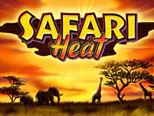 Safari Heat Слот